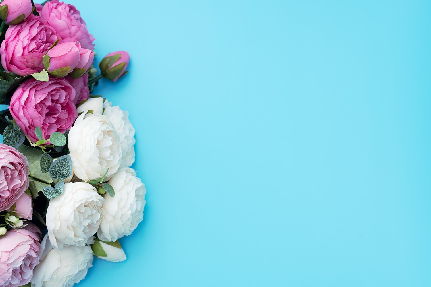 Pink and white flowers on blue background. example image 1