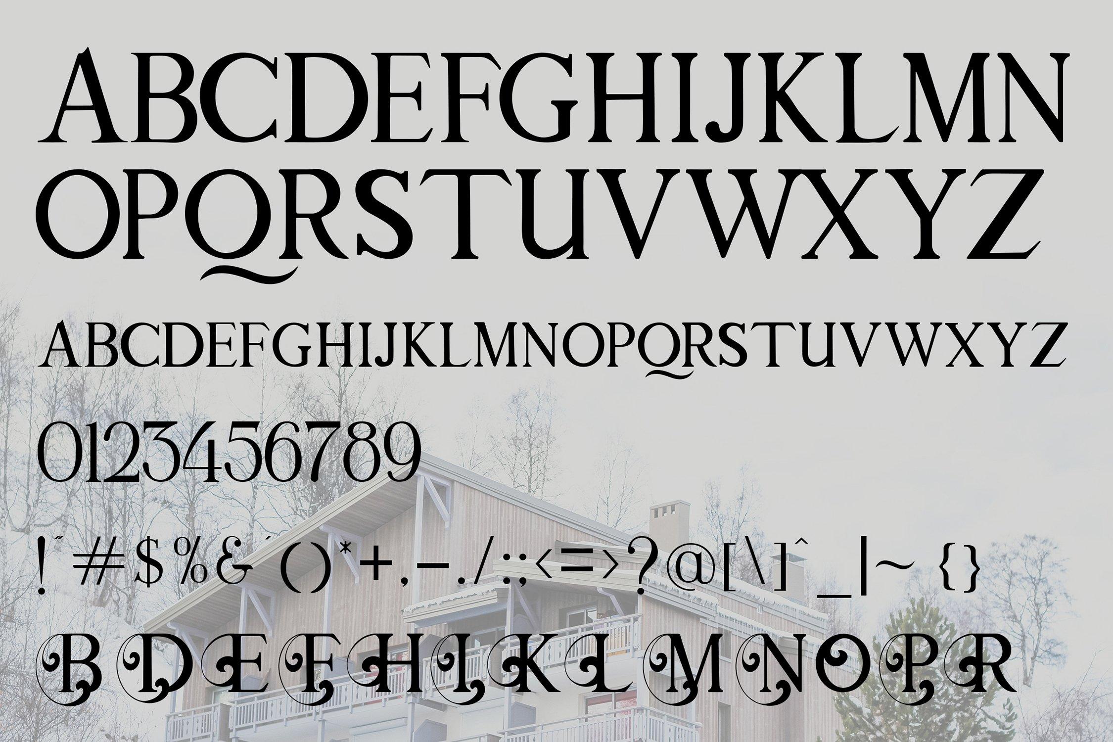 The Hotel - Luxury Font example image 7
