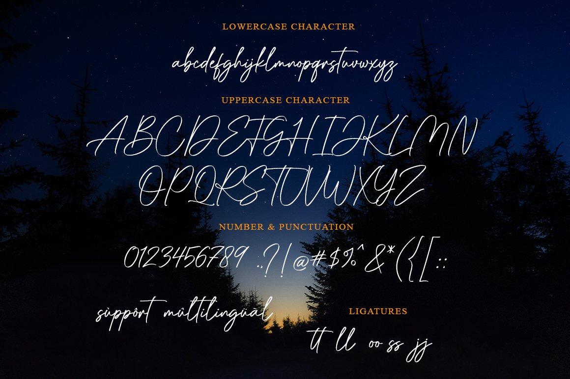 Raflessia - Elegant Signature Font example image 5