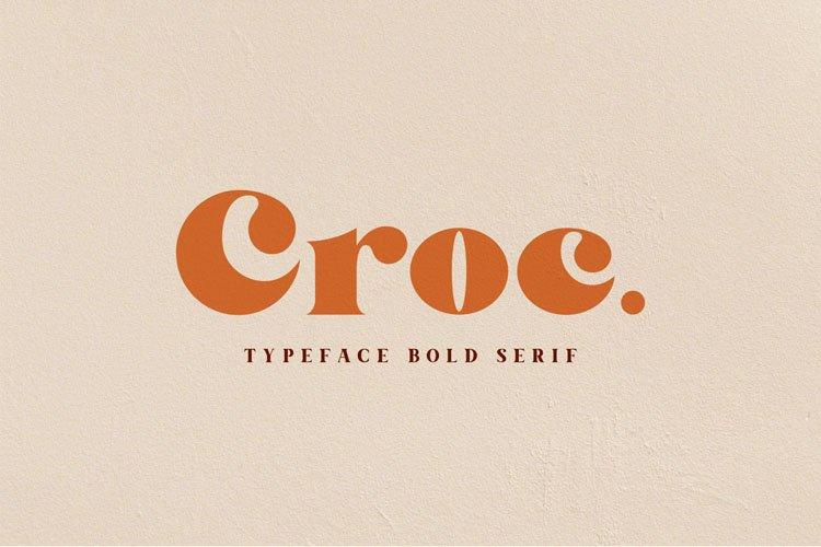 Croc. Typeface Bold Serif example image 1