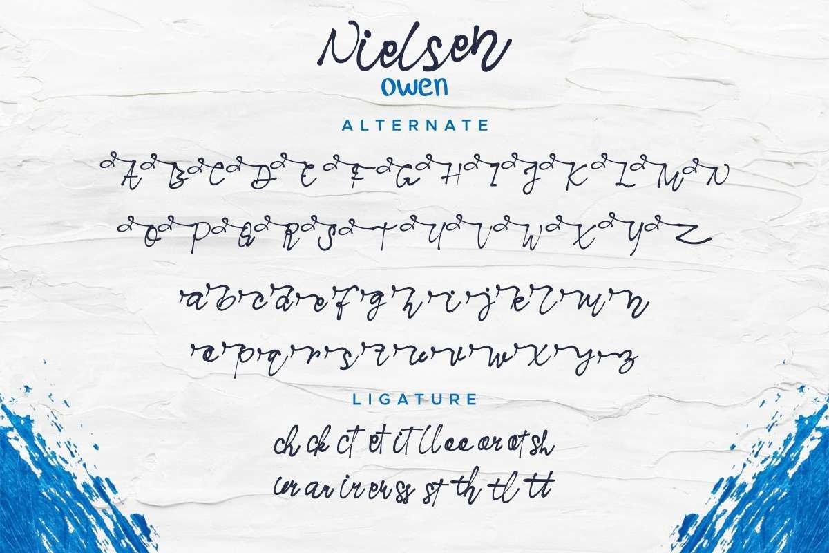 Nielsen Owen example image 5