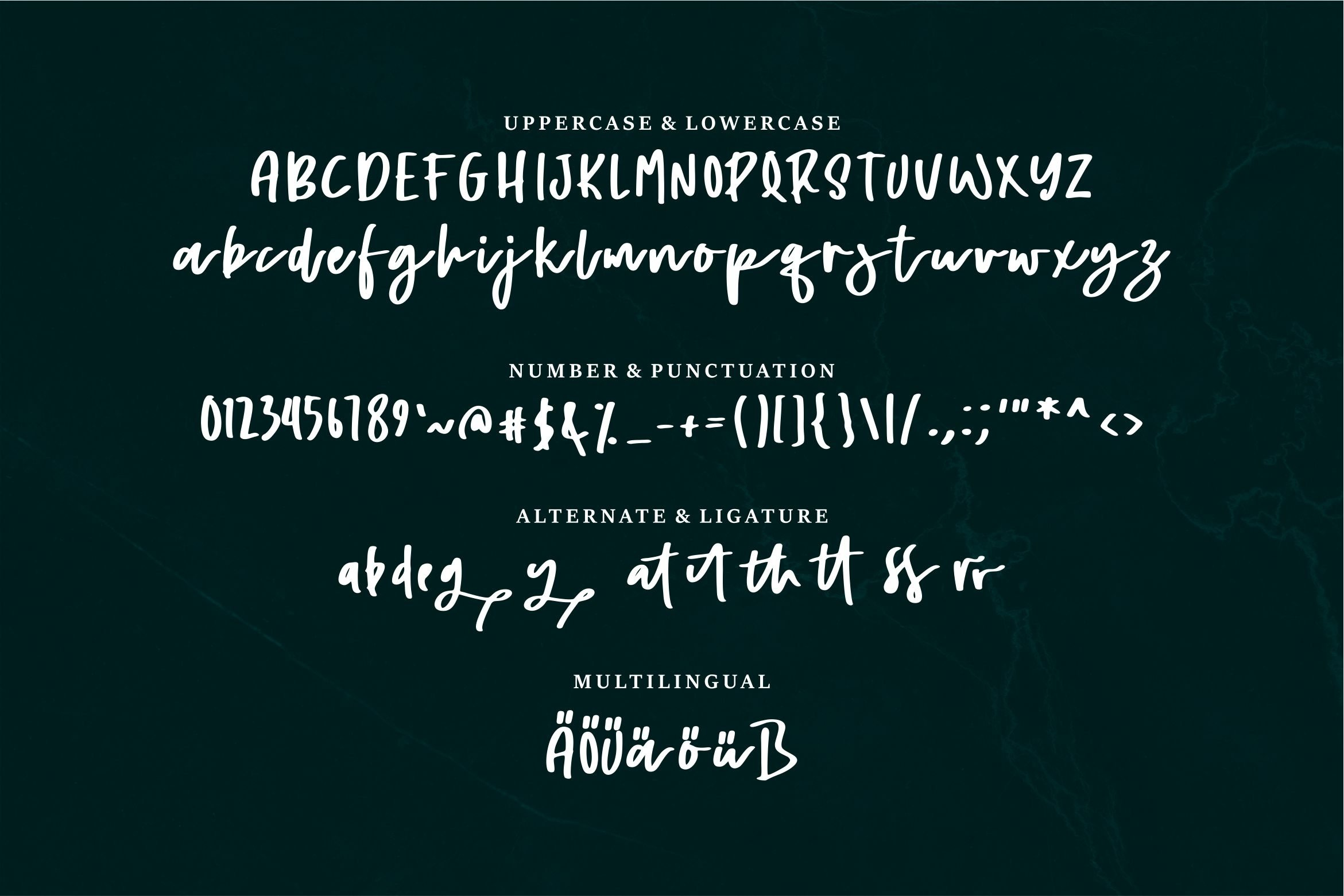 Alyra - A Handwritten Script Font example image 3