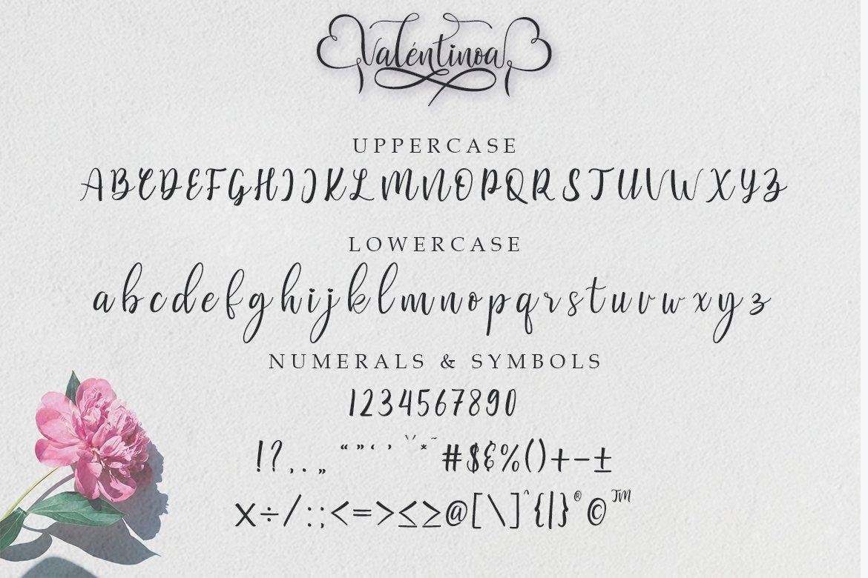 Valentinoa | A Romantic Calligraphy Font example image 8