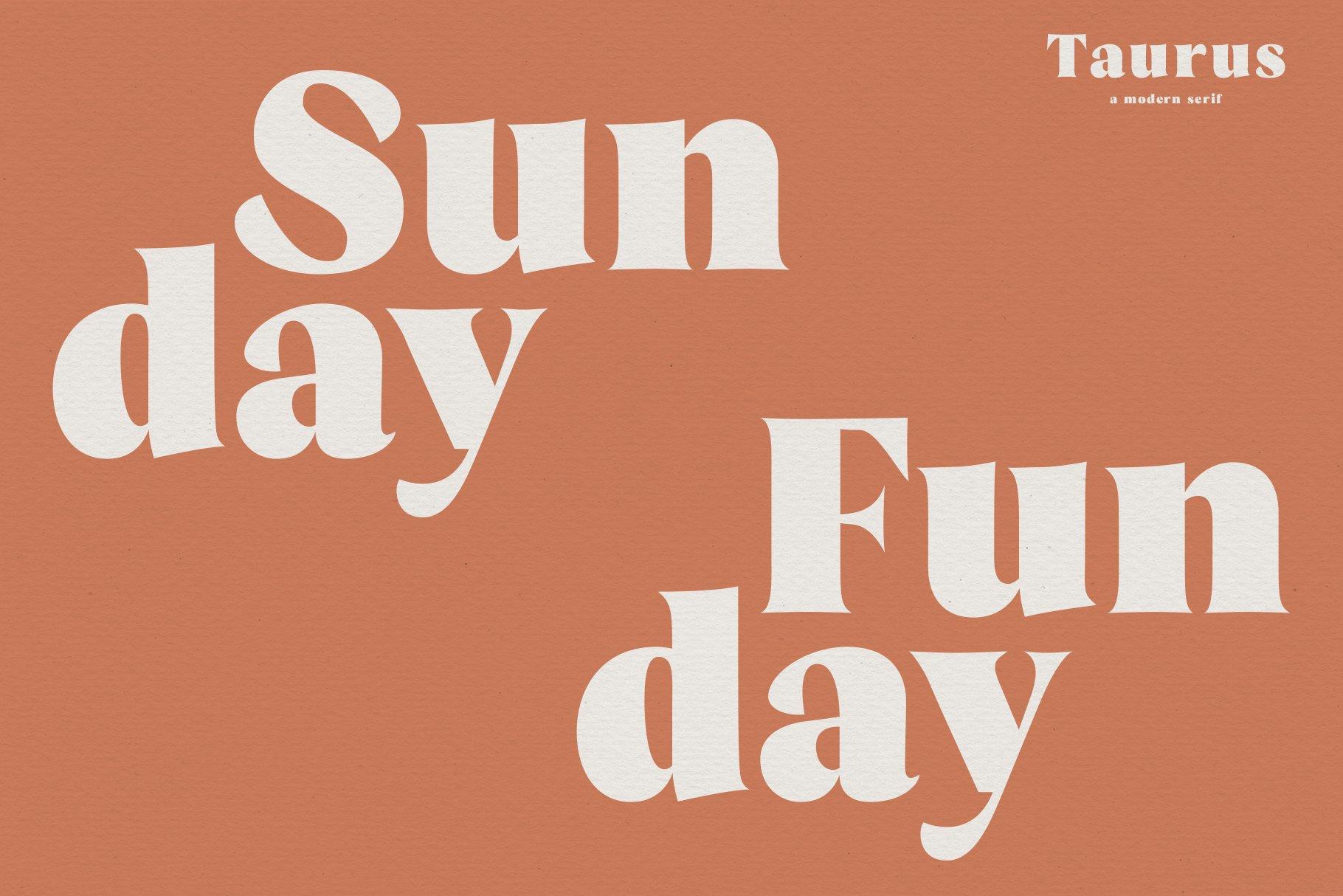 Taurus // A Stylish & Modern Serif example image 7