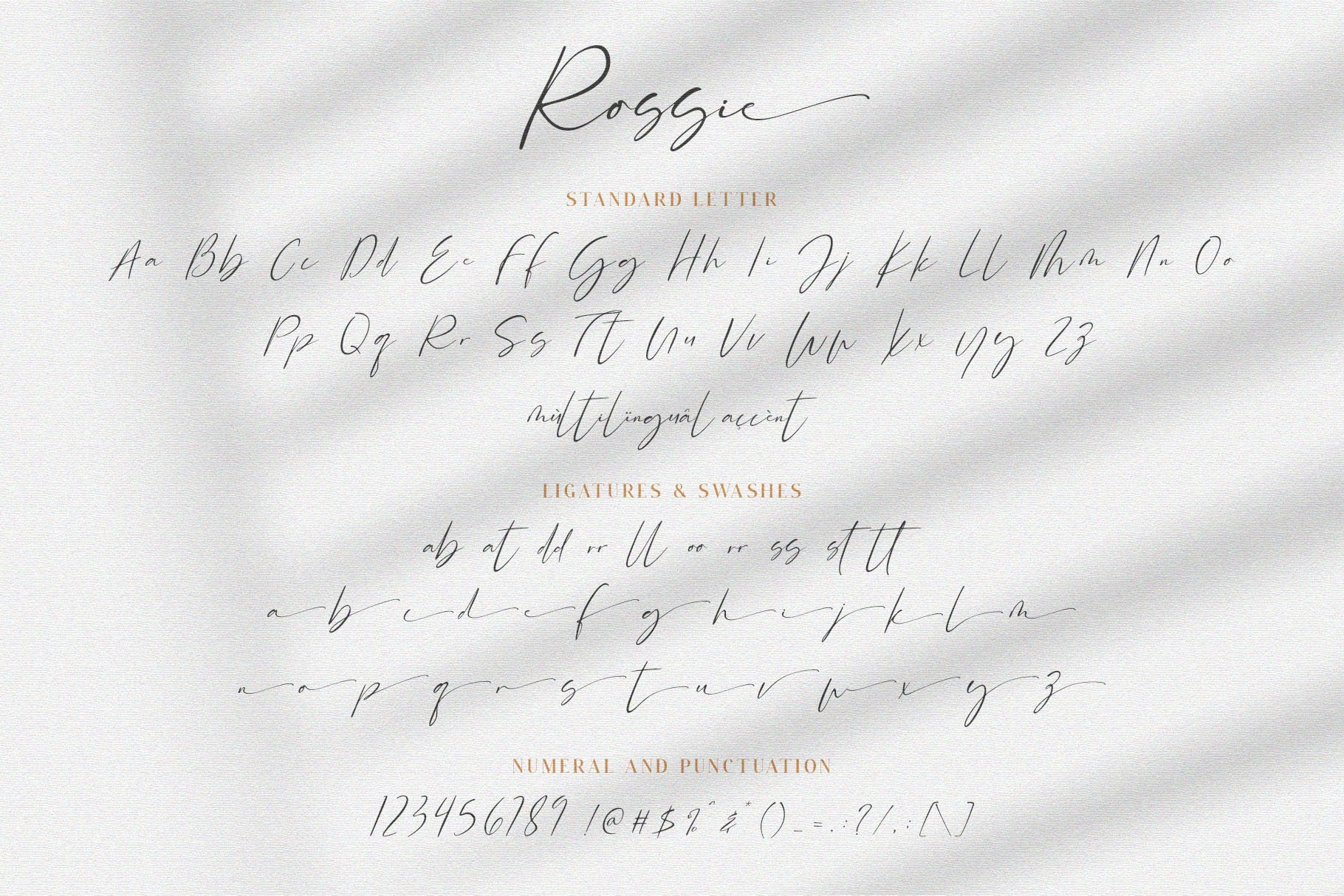 Rossie // Modern Script Font example image 7
