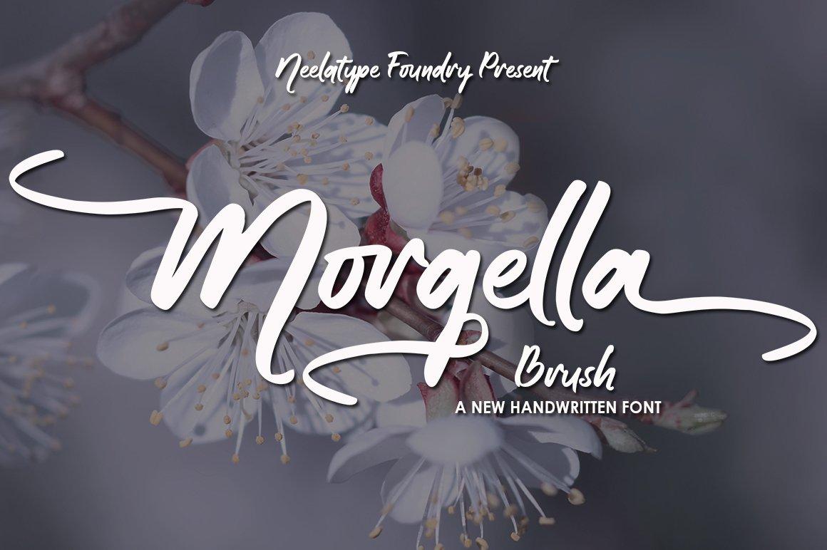 Morgella Brush example image 1
