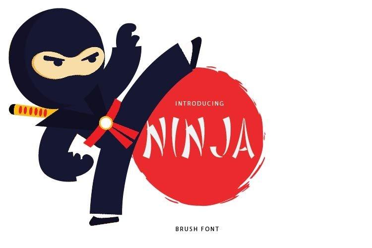 NINJA example image 1