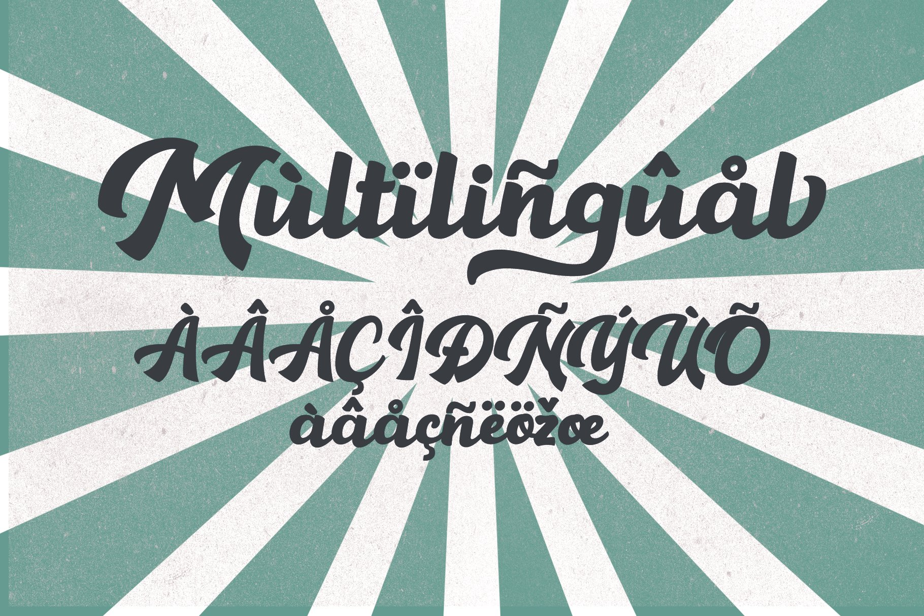 Hamelin Script Font example image 8