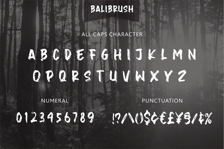 Balibrush example image 4