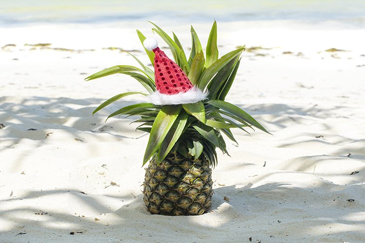 pineapple in Santa's hat example image 1