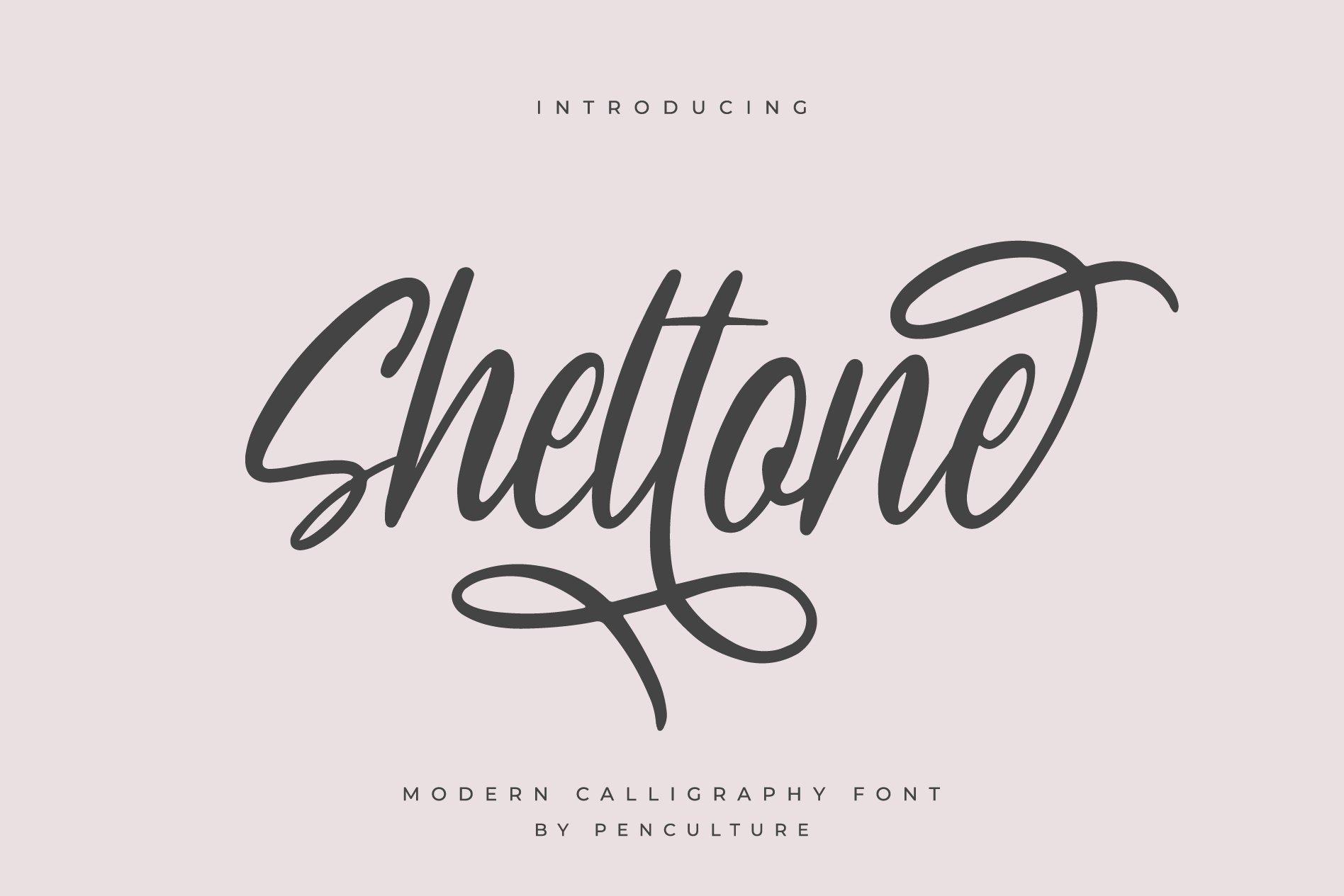 Sheltone - Modern Calligraphy Font example image 1