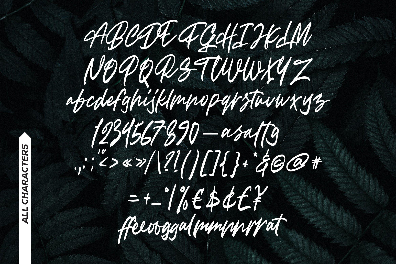 Haffigo - Script Fonts example image 7