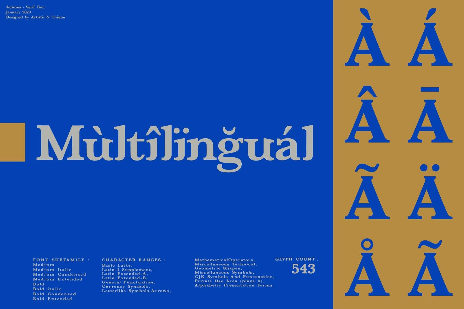 ANIMUS - Serif font family example image 8