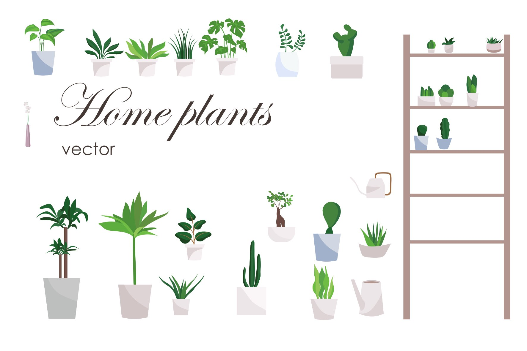Indoor Plants, Plants Clipart, Plant, Houseplant PNG and Vector with  Transparent Background for Free Download