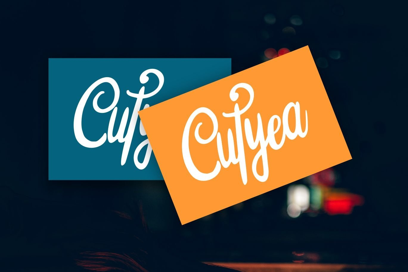 Silfhie | Modern Script Font example image 2