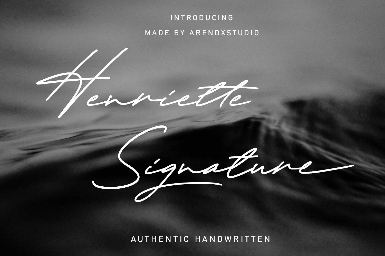 Henriette Signature Script Font example image 1
