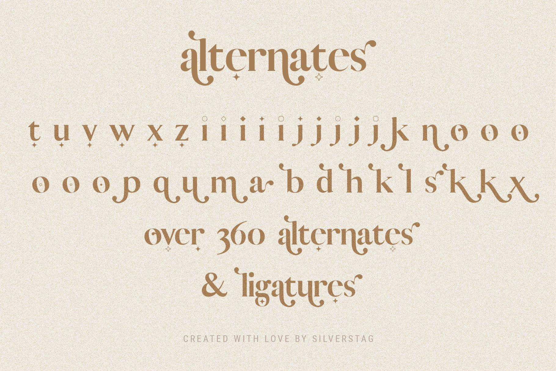 Vicky Christina - Chic & Stylish Ligature Serif Font example image 4