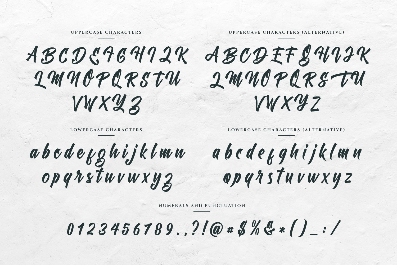 Chamberton Script Font example image 13