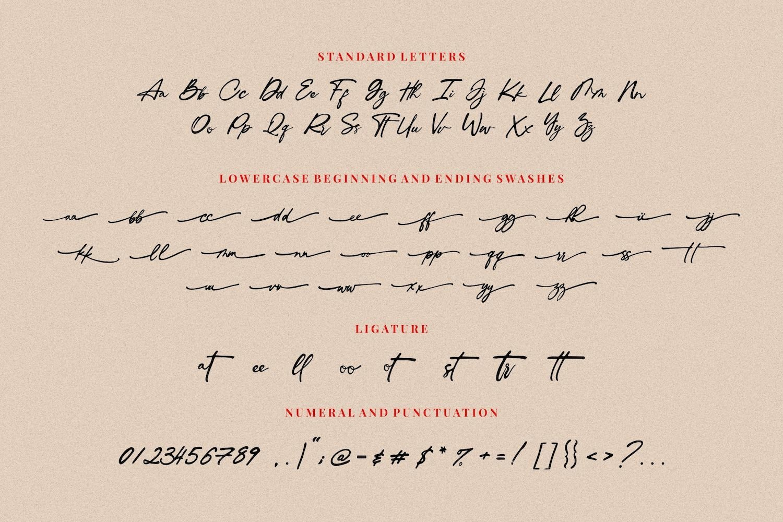 Ingkar Janji - Stylish Script Font example image 14
