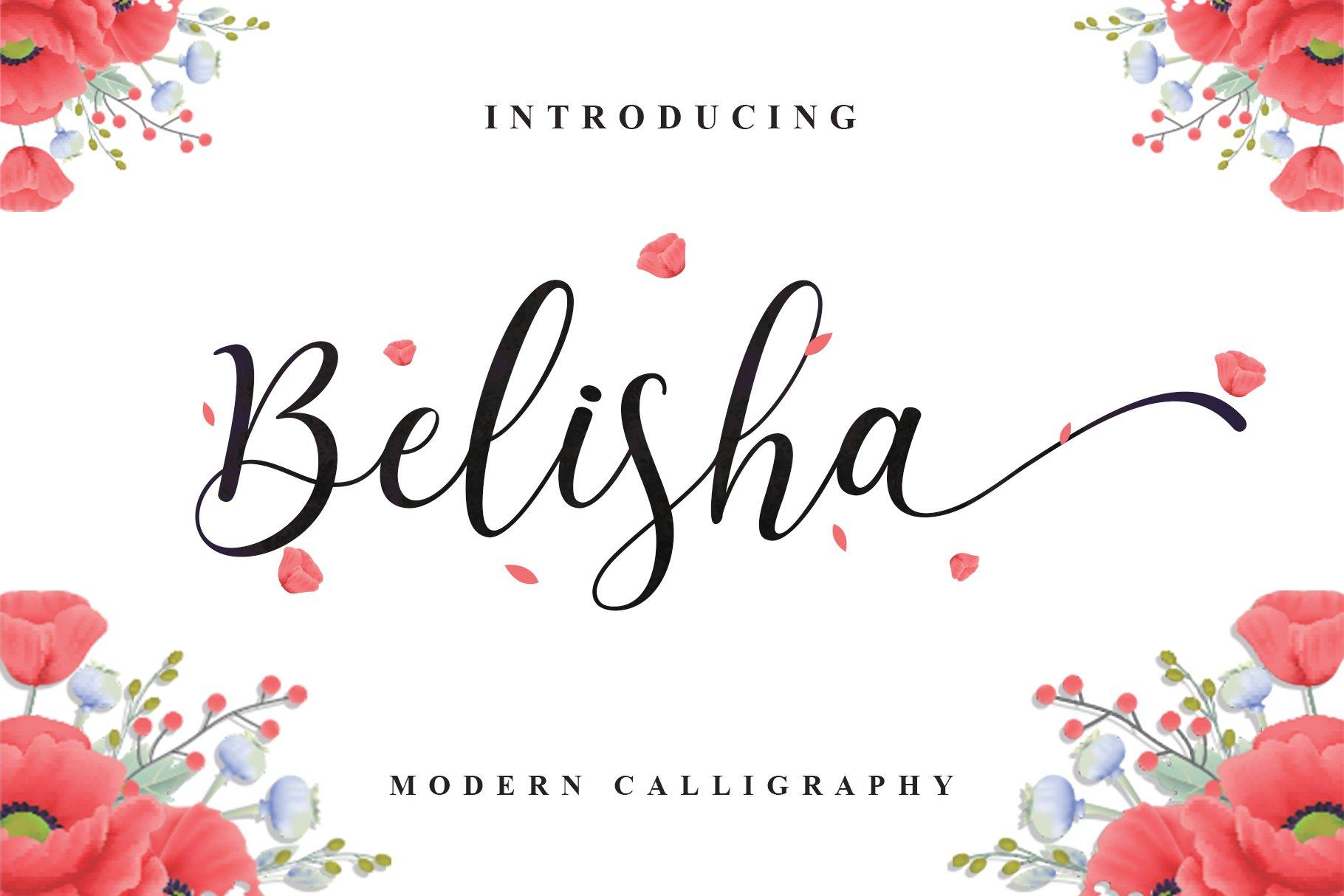 Belisha Modern Script example image 1