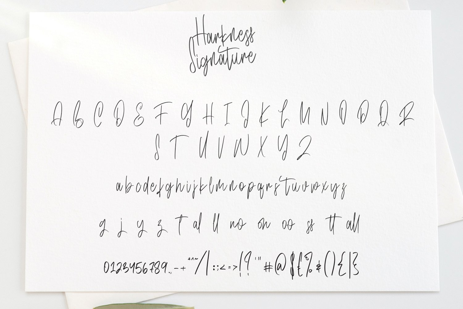 Harkness - Signature Script Fonts example image 6