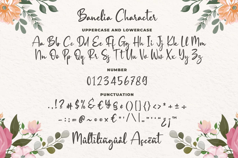Banelia Handwritting Font example image 5