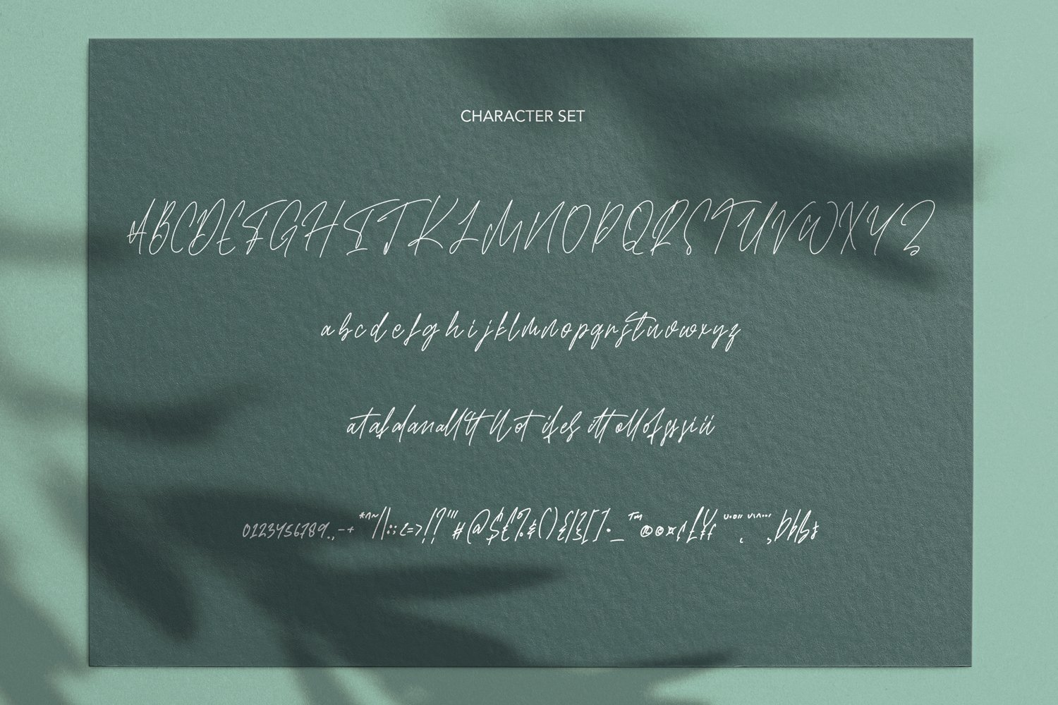 Wittiness - Signature Script Font example image 7