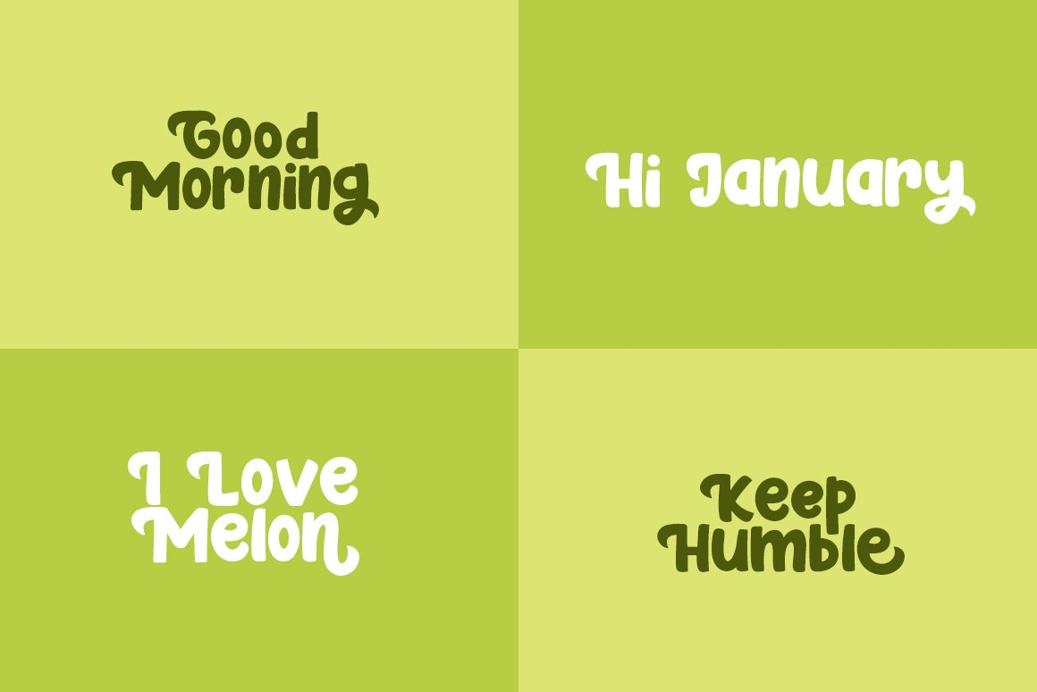 Fresh Melon example image 5