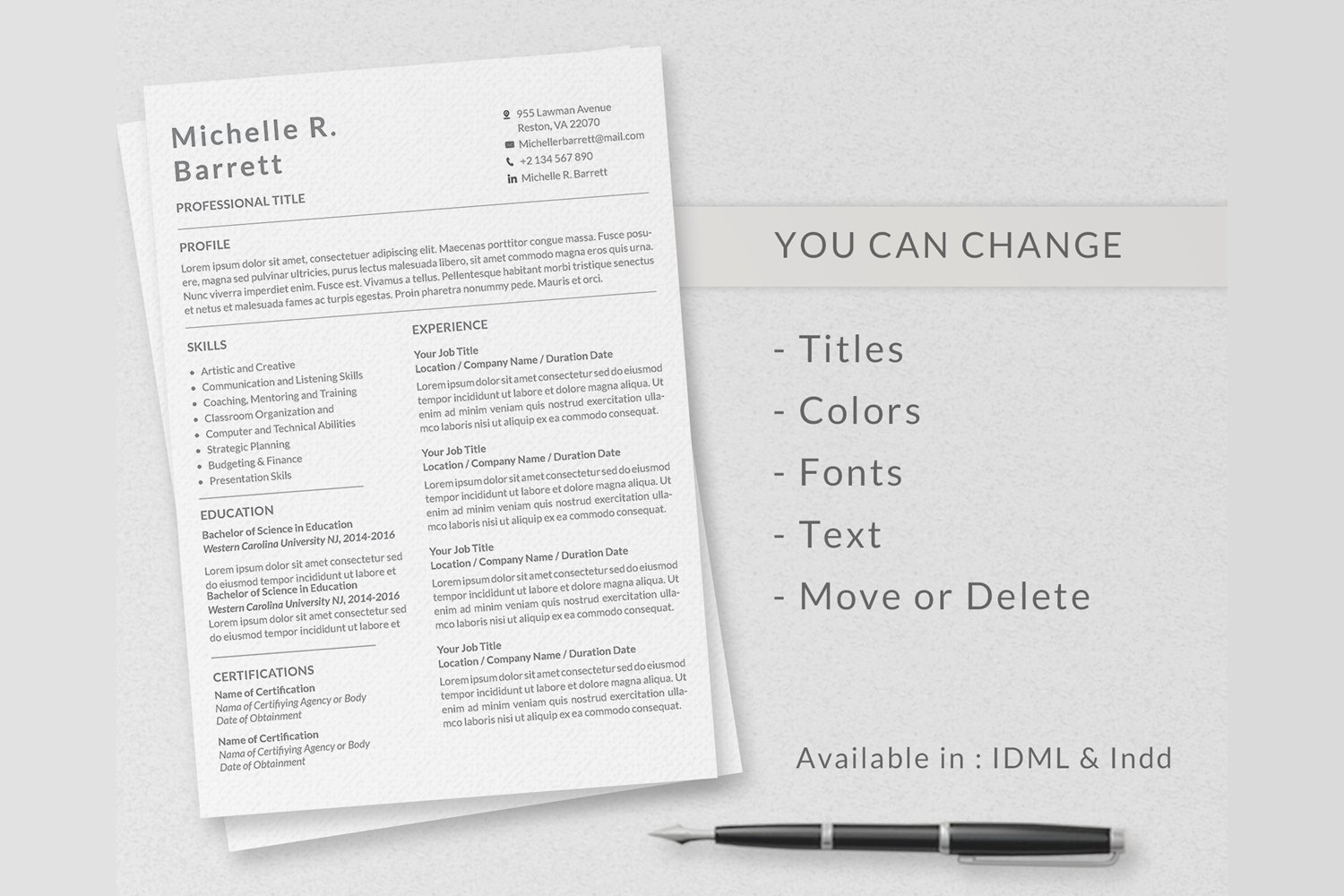 Professional Resume Templates example image 5