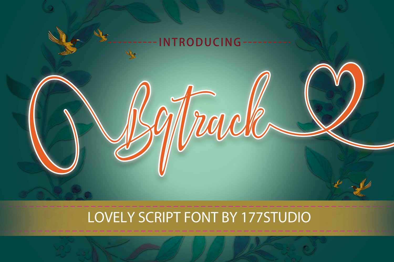 Bqtrack Calligraphy Script Font example image 1