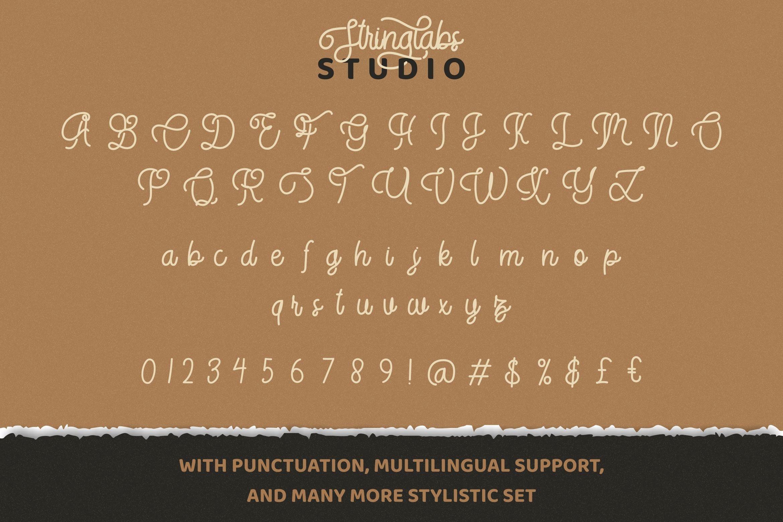StringLabs - Monoline Retro Font example image 13