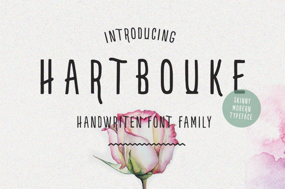 Hartbouke Skinny Font example image 11
