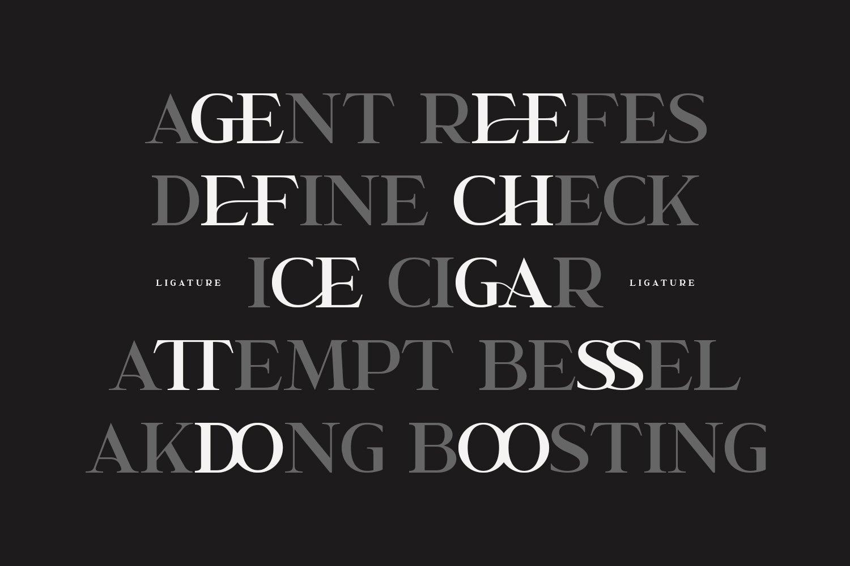 Garcedo Display Serif Font example image 7