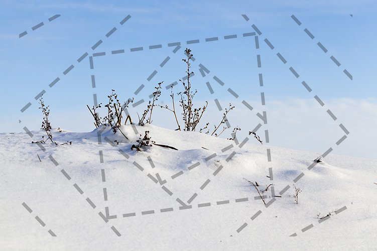 Grass cold snow sunny sky. example image 1