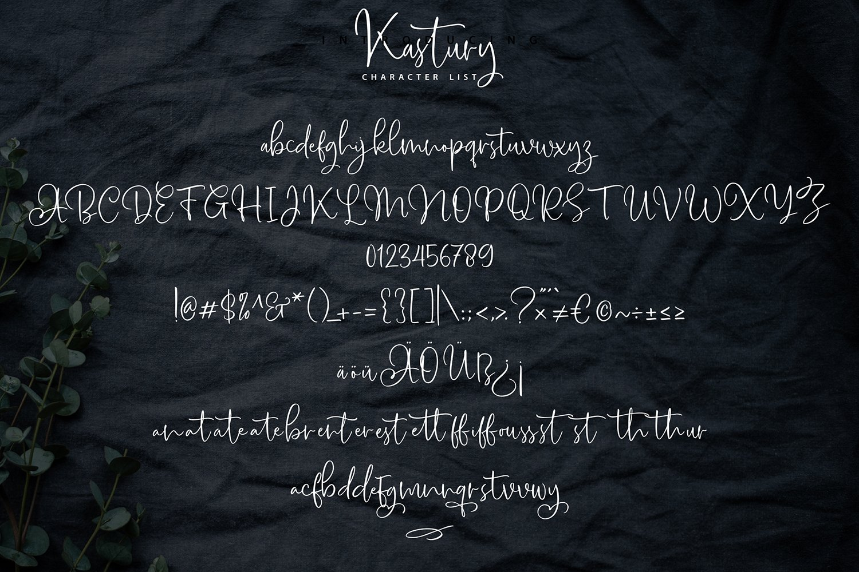 Kastury - Brush Handwriting Script Font example image 7