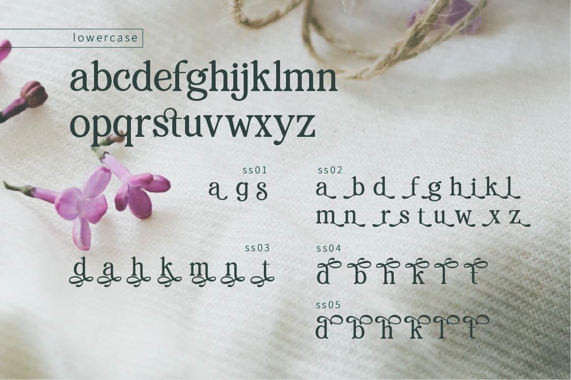 RENDA - Serif example image 4
