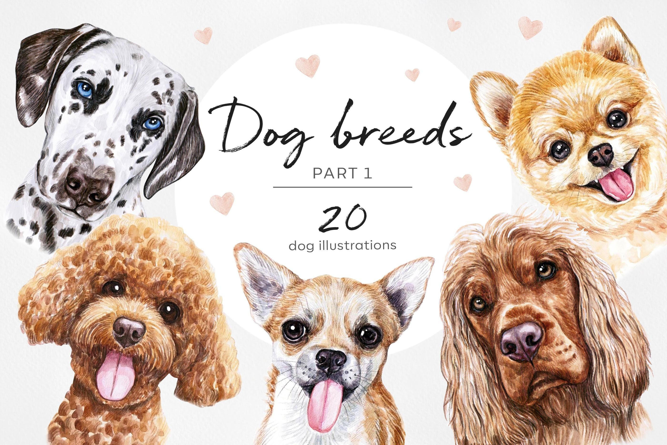 PART 1. Watercolor illustration set DOG breeds. Cute 20 dogs example image 1