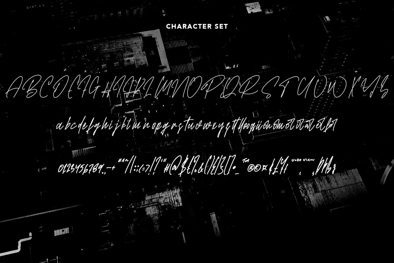 Brotherhood - Script Font example image 2