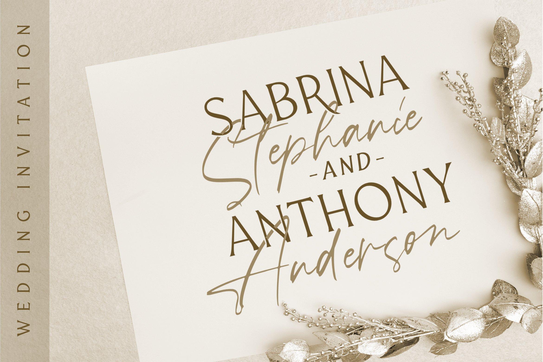 Ballerina - Signature Script Font example image 8