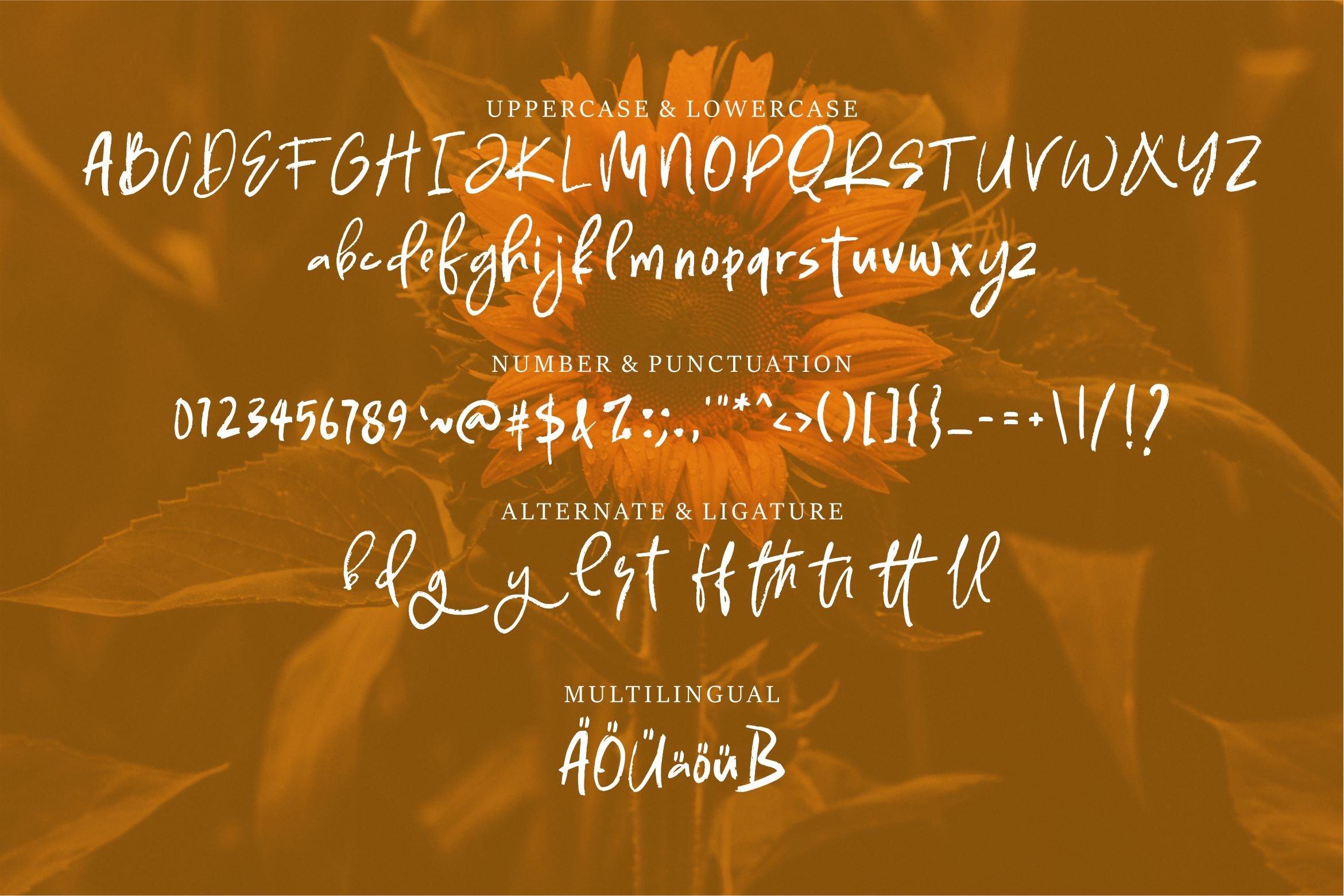 Rucker - Stylish Brush Font example image 5