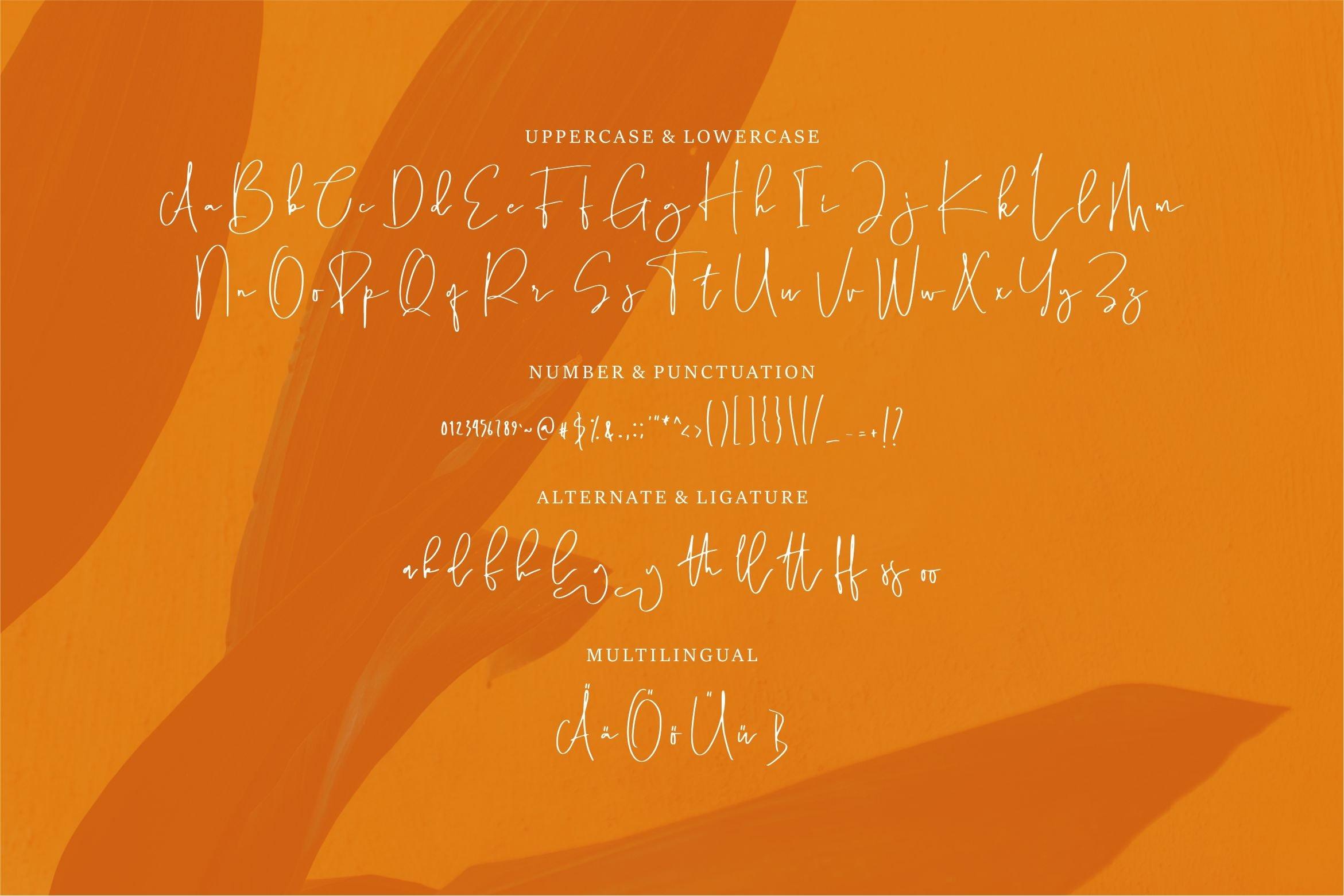Ataliya - A Hand Draw Script Font example image 3
