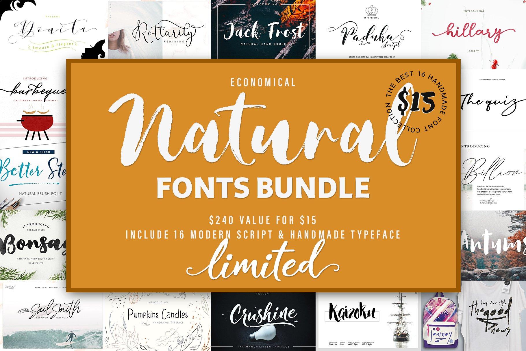 Natural & Script Fonts Bundles Vol. 01 example image 1