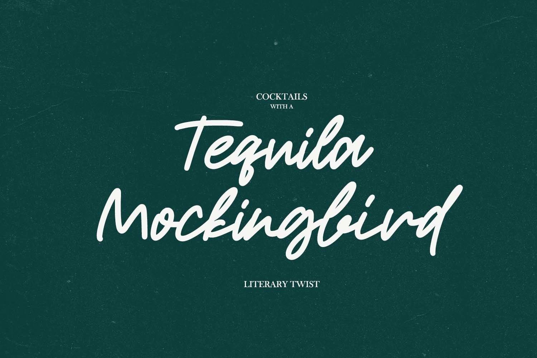 Roderick | Monoline Font example image 5