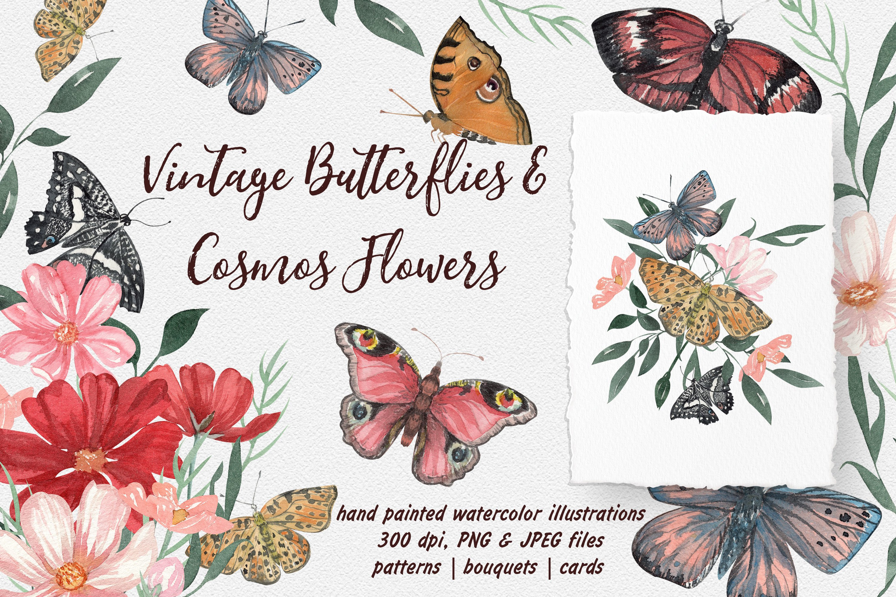 Vintage Butterflies And Cosmos Flowers Watercolor Collection 926522 Illustrations Design Bundles
