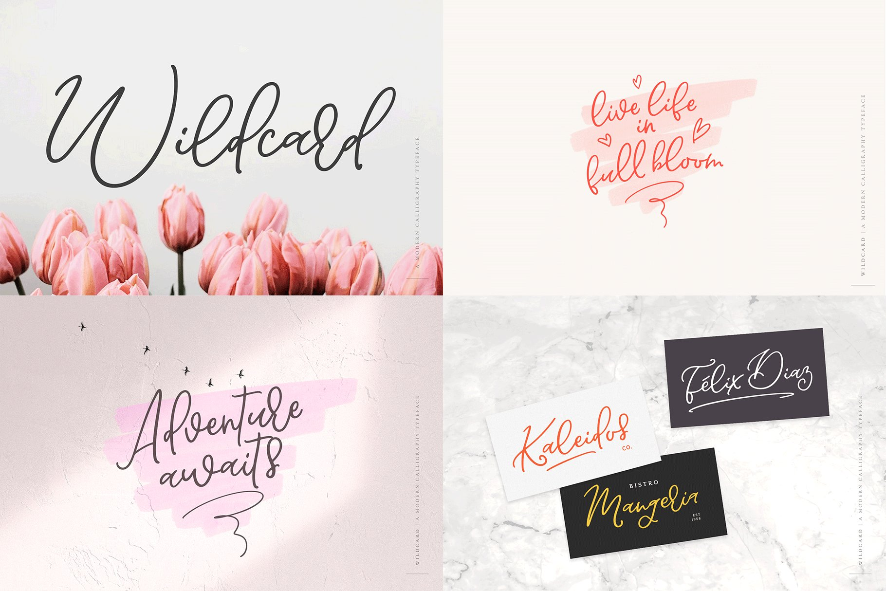 The Hand Lettered Font Bundle example image 8