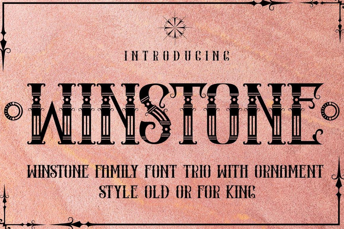WINSTONE example image 2
