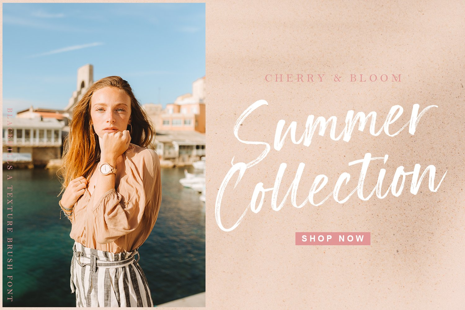 Blackhills - Brush Fonts example image 7