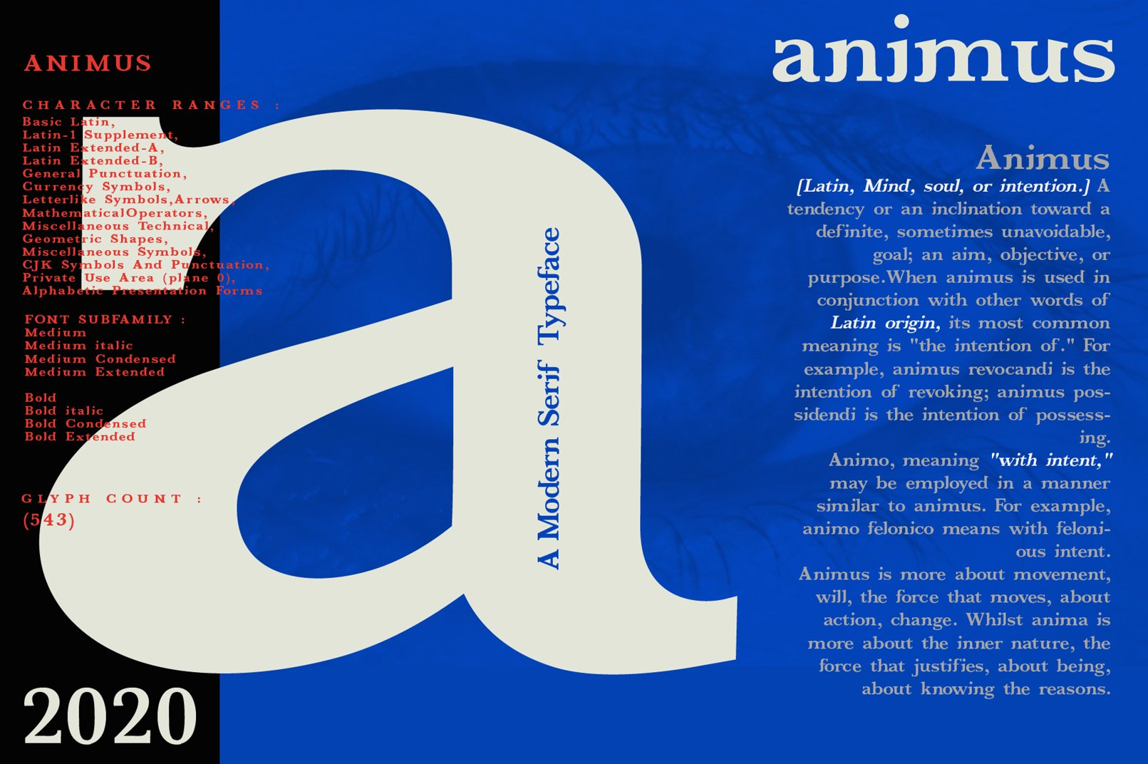 ANIMUS - Serif font family example image 7