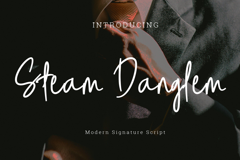 Steam danglem signature Font Script example image 1