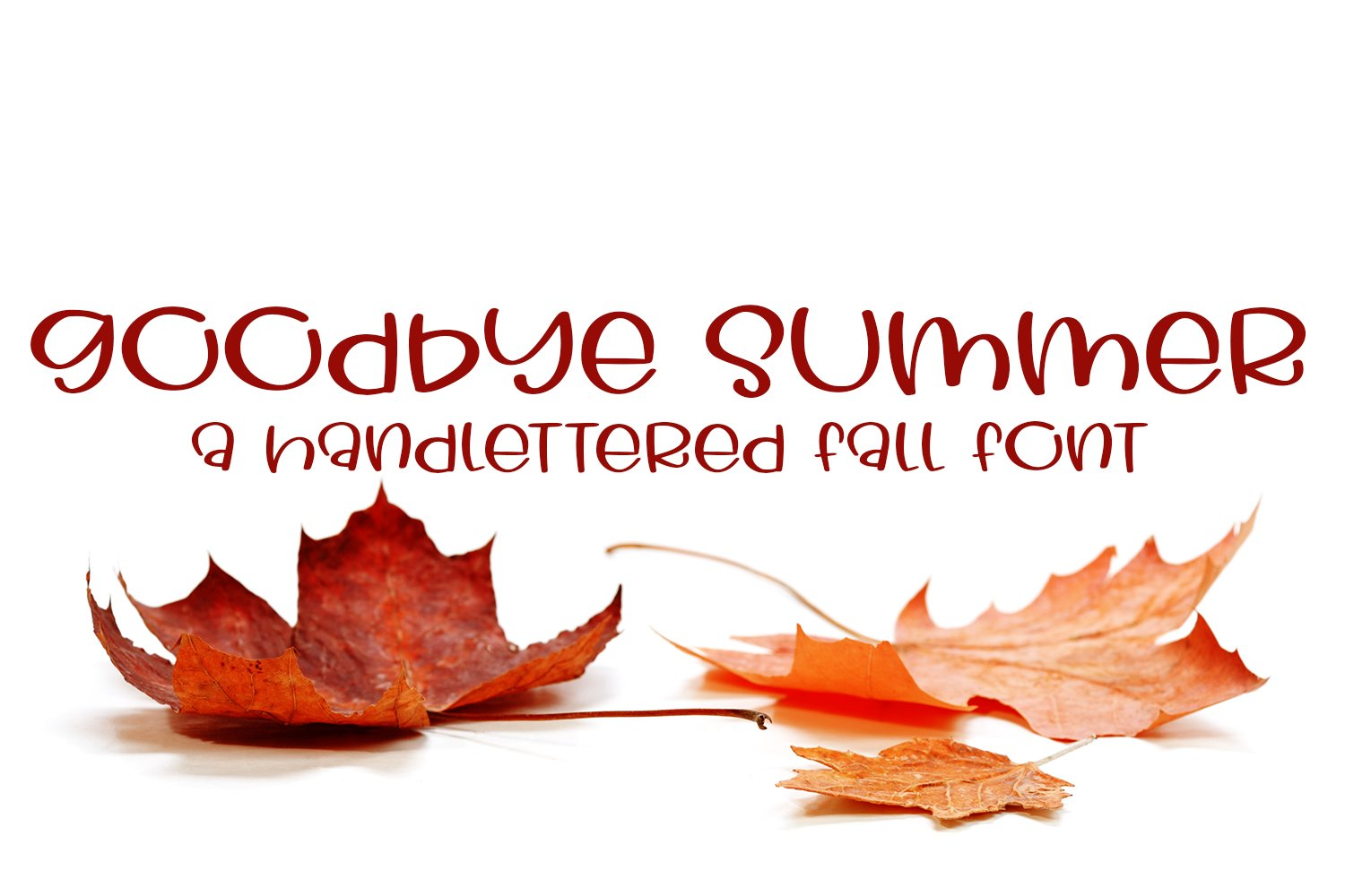 Goodbye Summer - A Hand-Lettered Fall Font example image 1